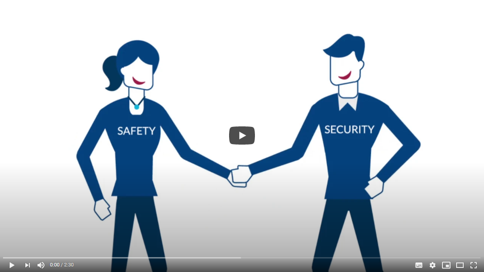 Video Preview for Safety and Security